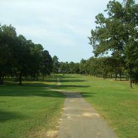 Longhills Golf Course #6, Benton, AR, Прескотт