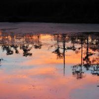 Sunset at Black Bayou Lake NWR, Смаковер