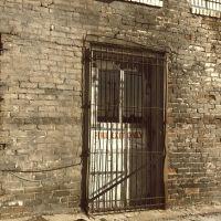 Back Door, Спрингдал