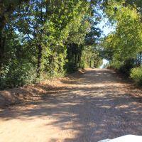 Tree canopied rural road, Тонтитаун