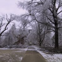 Old Main after the ice storm Jan 2009, Фейеттевилл