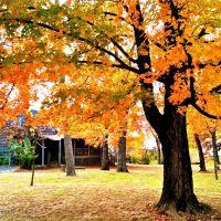 Fall in Fayetteville, Фейеттевилл
