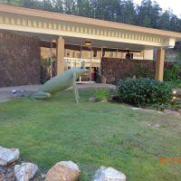 2013-06 Hot Springs, AR, Хот-Спрингс (национальный парк)