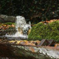 Bubbly, Хот-Спрингс (национальный парк)