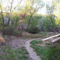 Path near the river, Каспер