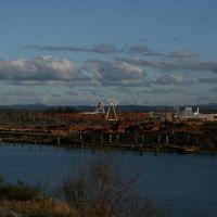 Log Yard, Абердин