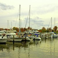 On Potomac River, Алдервуд-Манор