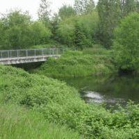 North Creek joins Sammamish River, Ботелл