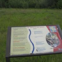 UW Bothell Wetland, Ботелл