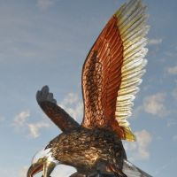 Eagle on Argonne, Spokane Valley, WA, Дишман