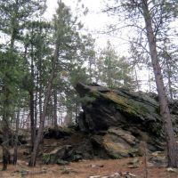 Cool Rocks in Dishman Hills, Дишман