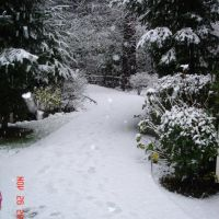 Snow in Everett, Интерсити