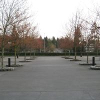 Expedia Bellevue - Building 1 & 2 Parking Lot (Looking South), Истгейт