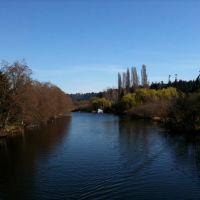 Sammamish River near Kenmore, Кенмор