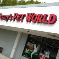 Dennys Pet World, Кингсгейт