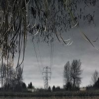 Totem Lake Flipped Power Line Reflection. Kirkland, Washington, Кингсгейт