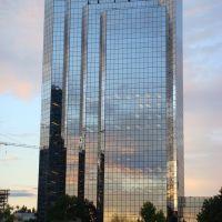 Shiny Skyscraper, Клайд-Хилл