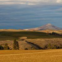 Steptoe Butte, Колфакс