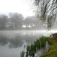 Morning Mist on Lake Sacajaweja, Лонгвью