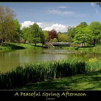 Peaceful Spring Afternoon, Лонгвью