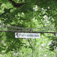 Nutty Narrows Bridge, Лонгвью
