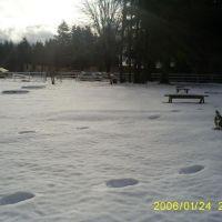 Traces on the snow,..Longview Wa,USA., Лонгвью