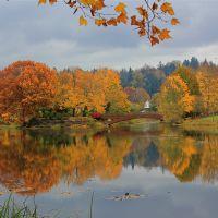 Autumn Foliage, Лонгвью