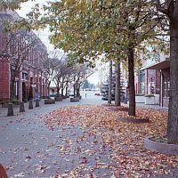 Autumn, Маунт-Вернон