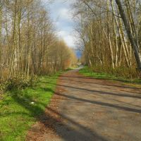 Kulshan Trail, Маунт-Вернон