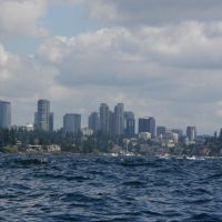 Bellevue and Lake Washington, Медина