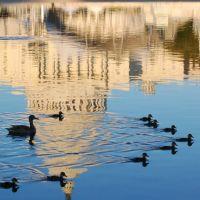 Capitol Lake, Меркер-Айланд