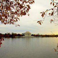 Nhà tưởng niệm Thomas Jefferson  (Thomas Jefferson Memorial), Паркланд