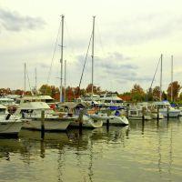 On Potomac River, Сентралиа