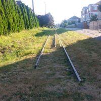 Where the train tracks end..., Сноухомиш