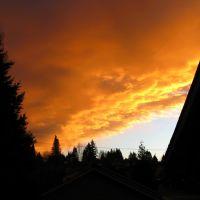 Red Skies at Night, Сноухомиш