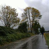 Rainy Day, Сноухомиш