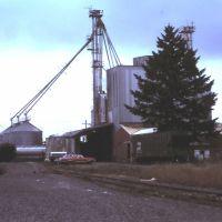 Grain Elevator Milling Co - Snohomish, WA - June 1994, Сноухомиш