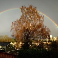 Double Rainbow, Northwest Bellevue WA, Хантс-Пойнт