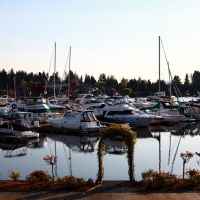 Marina, Carillon point, Kirkland, Хантс-Пойнт