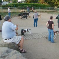 Lowell Dog Park, Эверетт