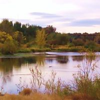 A view across a pond on the Yakima Greenway, Якима