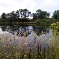A picturesque view, west, across a pond on the northern Yakima Greenway, Якима