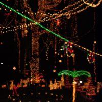 Holiday Lights, Аннандейл