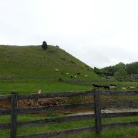 Vaches en Virginie, Блу-Ридж