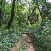 The Path, Вудбридж