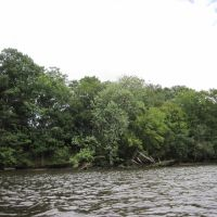 a tidal shore on the fairfax side of the occoquan, Вудбридж