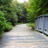 Lewis Ginter Botanical Garden, Лейксайд