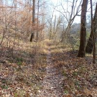 Bull Run-Occoquan Trail above Johnny Moore Creek, Манассас-Парк