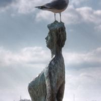 Jonathan Livingston Seagull on the Peaks of Otter, Норфолк