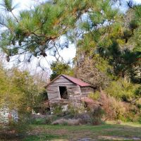 VIRGINIA: ISLE OF WIGHT COUNTY: RUSHMERE: collapsing barn behind unoccupied premises on Old Stage Highway (S.R. 10), Рашмер